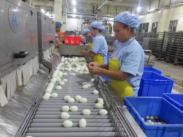 卤蛋生产线